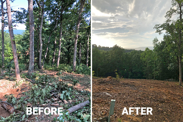 Forestry Mulching - Land Clearing, Underbrush Removal In VA
